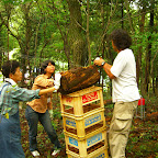 ArtPlant2009・協働制作