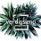 Verdissimo's profile photo