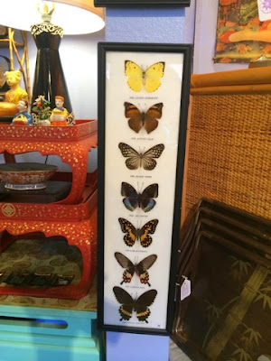 Pagoda Kauai vintage antique shop store Kapaa Hawaii real butterfly art
