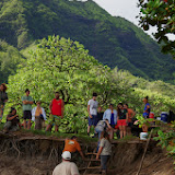 06-26-13 National Tropical Botantial Gardens - IMGP9480.JPG