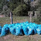 Уборка мусора на пляжах у Белой горы 011.jpg