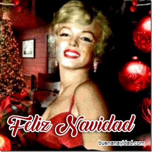 marilyn monroe feiz navidad 2 (15)