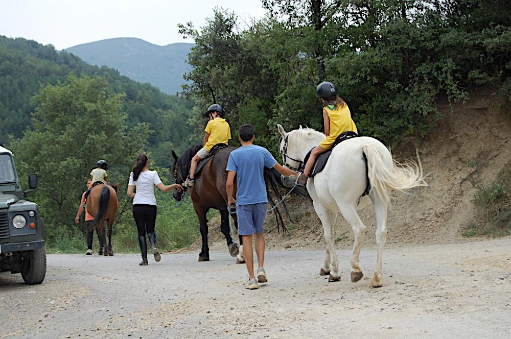 Campaments dEstiu 2010 a la Mola dAmunt - campamentsestiu371.jpg
