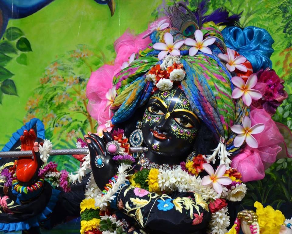 ISKCON Nasik Deity Darshan 03 Feb 2016 (16)