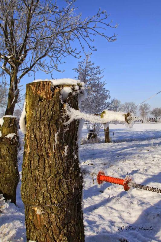 Winter - Winter-042.jpg
