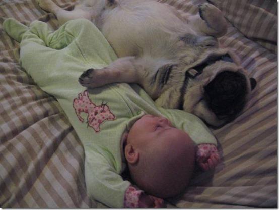 niña con perro (10)