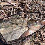 20140323_Fishing_Netishyn_024.jpg
