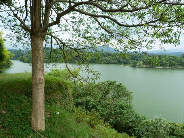 TAIWAN.Dans la région de Miaoli - P1080346.JPG