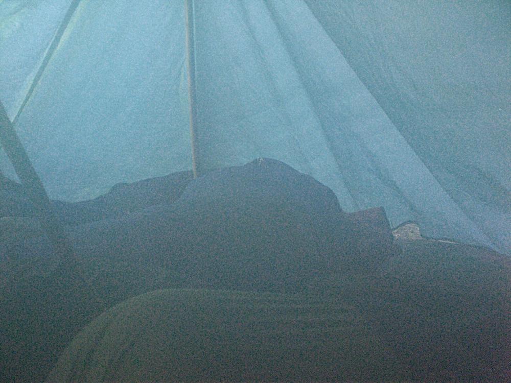 Campaments Amb Skues 2007 - CIMG8702.JPG