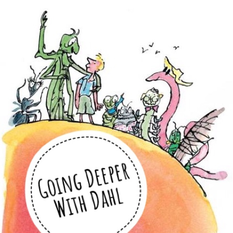 Going Deeper With Dahl That Boy Can Teach