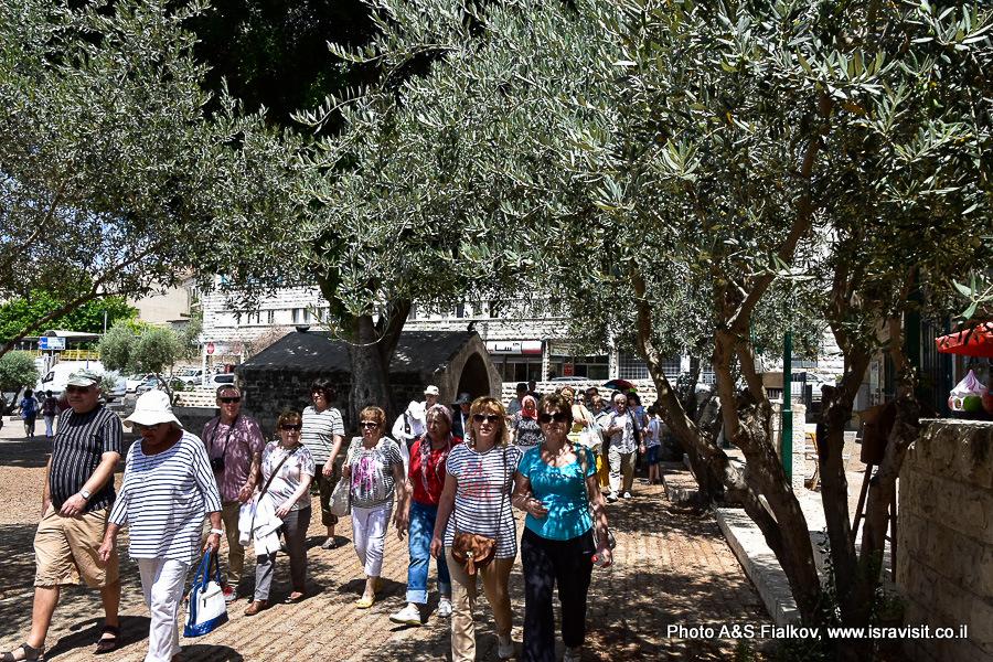 Экскурсия на улицах Назарета. Гид в Израиле Светлана Фиалкова.
