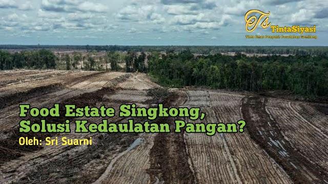 Food Estate Singkong, Solusi Kedaulatan Pangan?
