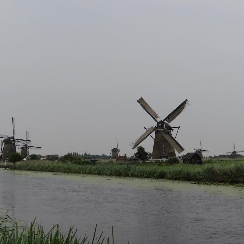 Day_6_Kinderdijk_08.JPG