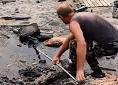 Rescuing dog from a pile of oil, they did not give up until they brought it back to life