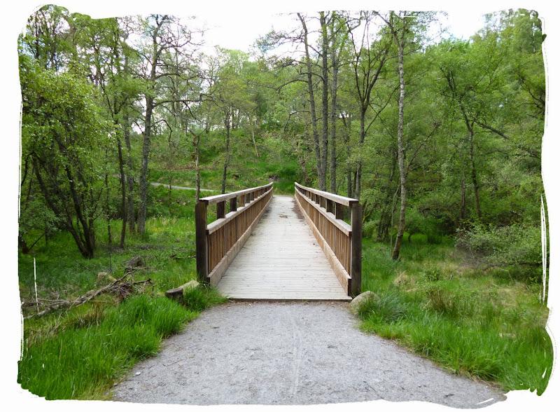 Walk Report The Deeside Way Aberdeen To Ballater