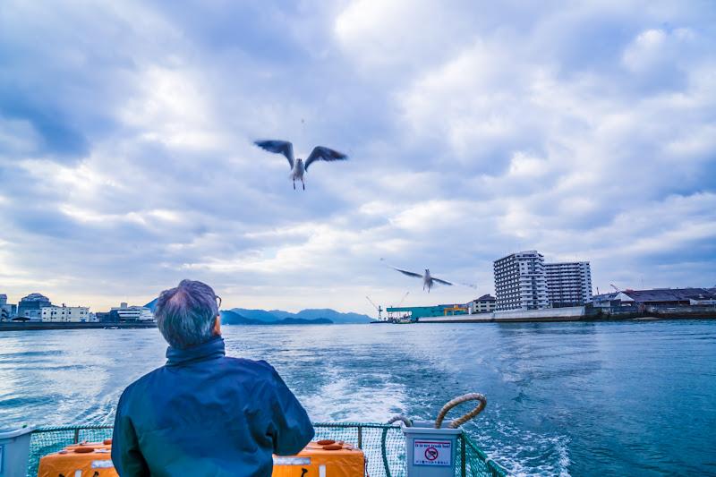 Hiroshima Miyajima World Heritage Sea Route seagulls1