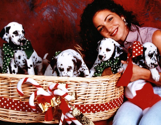 Gloria Estefan with a basket of puppies