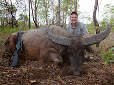 Mr Dave Tretter again with a really old buffalo in the bush country of Carmor Plains. These old bulls live out their days away from the plains where the bigger and stronger younger bulls roam. Whilst not as big in the body as the previous floodplain bull, this old warrior has great horns.