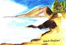496 Seaside Sand
