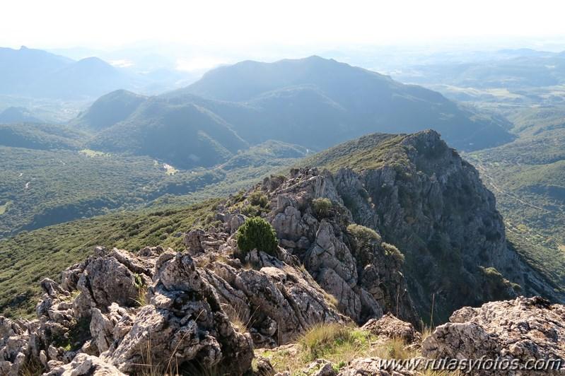 Cresteria de la Sierra del Pinar
