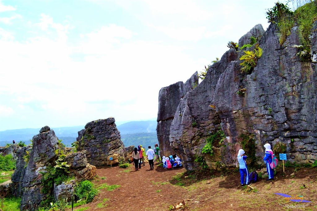 stone garden 18  april 2015 nikon  07