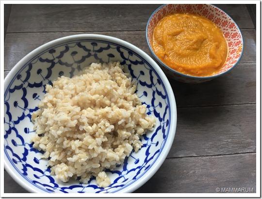 Salsa curry veloce vegan14