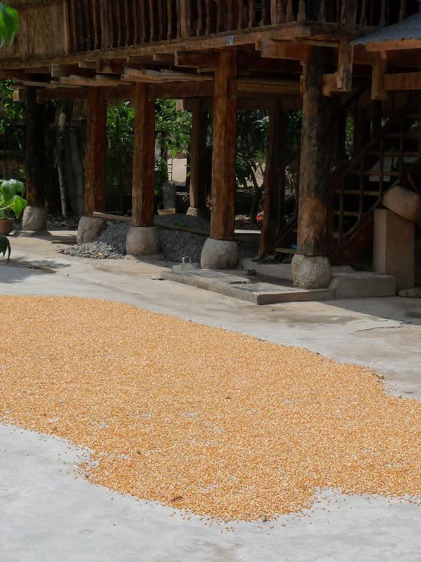 Chine . Yunnan..Galamba, Menglian Album A - Picture%2B185.jpg