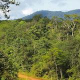 La piste en face de l'Auberge des Orpailleurs (Guyane). 25 novembre 2011. Photo : J.-M. Gayman
