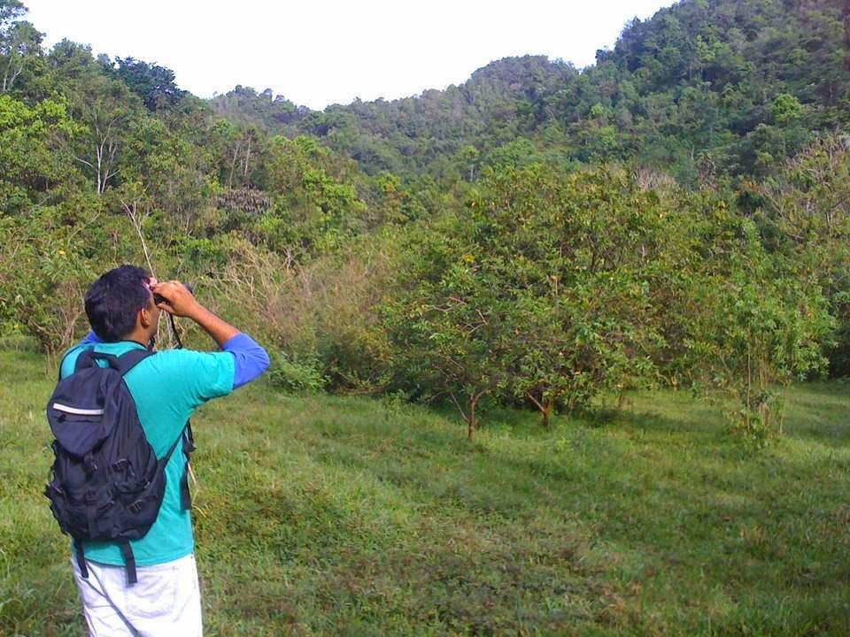Sobre-aves-y-bosques_observa-escucha-y-cuenta2.jpg