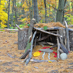 Ann Arbor Fairy House.JPG