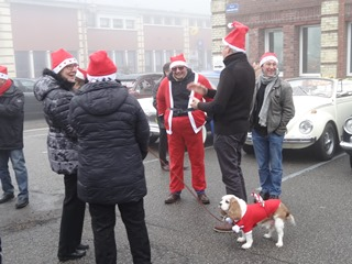 2016.12.18-002 chien déguisé