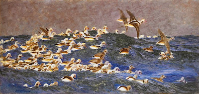 Bruno Liljefors - Long-tailed Ducks in the outer archipelago 1911