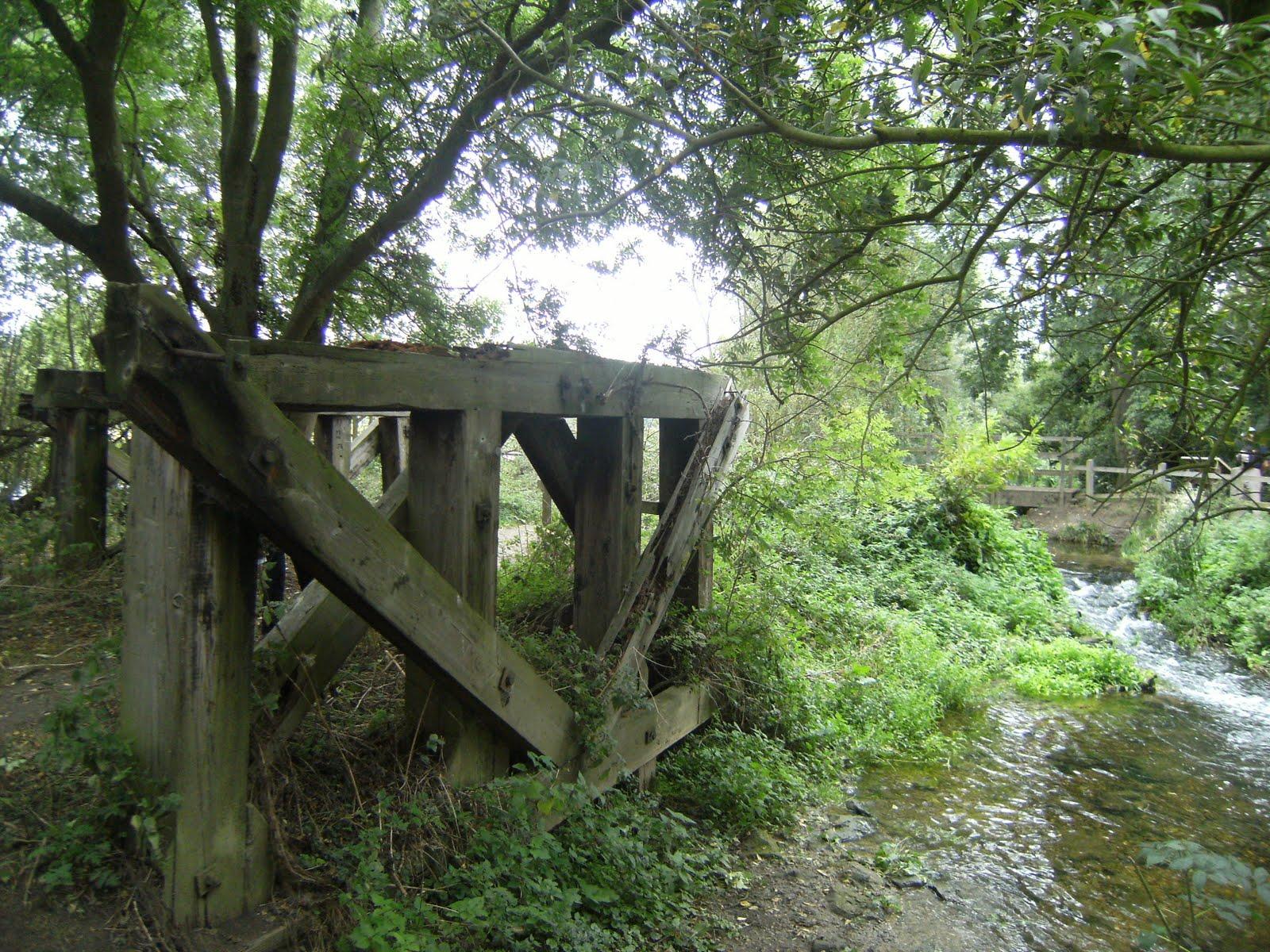 DSCF9453 Remains of old railway bridge