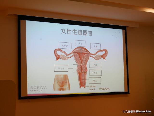 慧智基因&禾馨醫療-女性保健新知(陳保仁醫師、HPV採檢)與時尚穿搭(林葉亭老師)講座心得記錄分享:子宮頸癌不可怕,可怕的是妳的心態!請深度檢視如何愛自己~@宅女懶懶子的生活圖文誌 健康養身 攝影 時事 民生資訊分享 穿搭分享 醫美