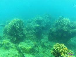 Pulau Harapan, 16-17 Mei 2015 GoPro  03
