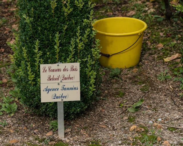 Petites vendanges 2017 du chardonnay gelé. guimbelot.com - 2017-09-30%2Bvendanges%2BGuimbelot%2Bchardonay-197.jpg