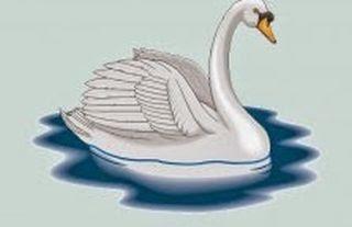 El cisne y su dueño fabulas infantiles