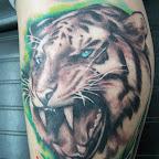 leoes.jpg