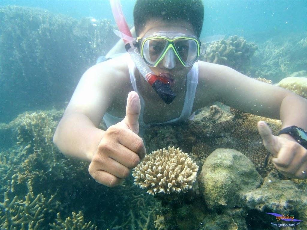 Pulau Harapan, 16-17 Mei 2015 Olympus  31