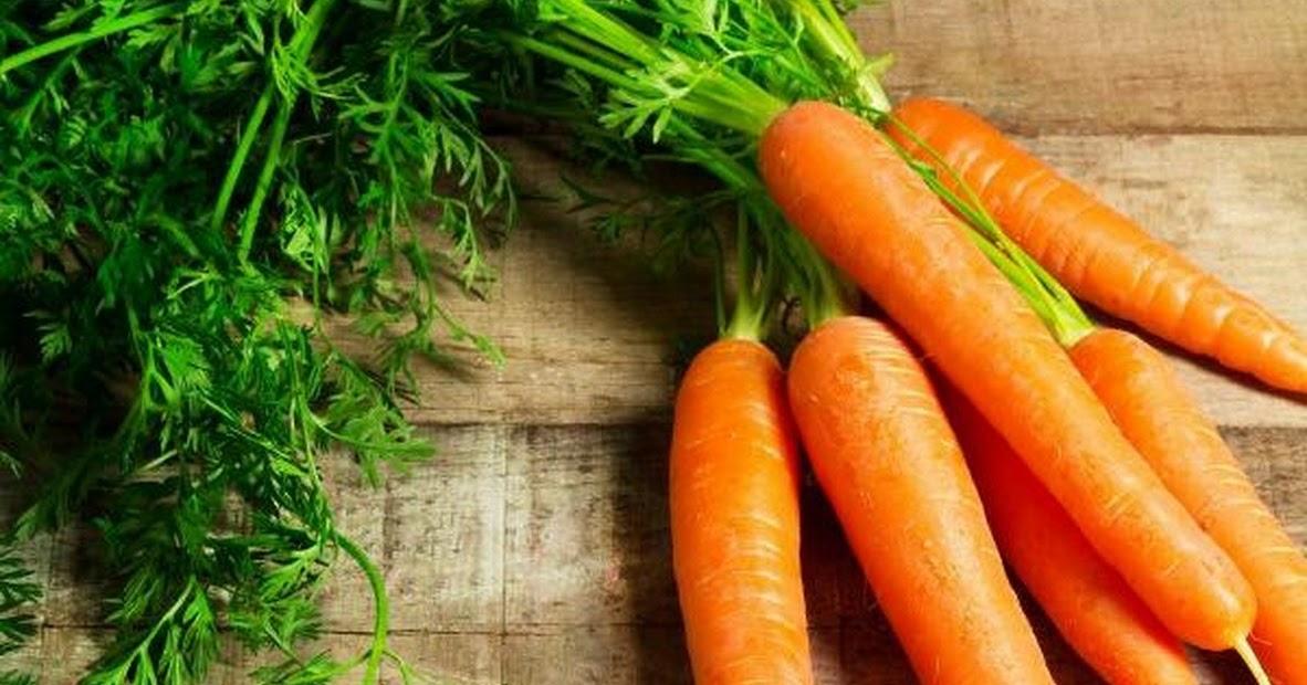 Cách trồng cà rốt trong thùng xốp như thế nào?