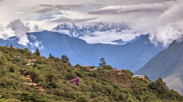Les Andes depuis Chovacollo (Yungas, Bolivie), 29 décembre 2014. Photo : Jan Flindt Christensen