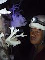Rambli Ahmad and helictites, Whiterock Cave | photo © Hugh St.Lawrence