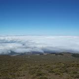 Hawaii Day 8 - 100_8087.JPG