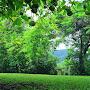 The_enchanted_ancient_ornamental_apple_garden_picnic_setting_-_6845-28.jpg