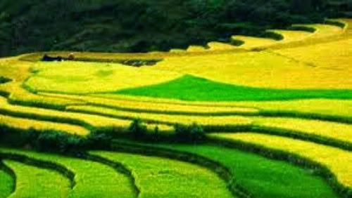 images%2B%281%29 001 Nên đi du lịch Hà Giang vào mùa nào?
