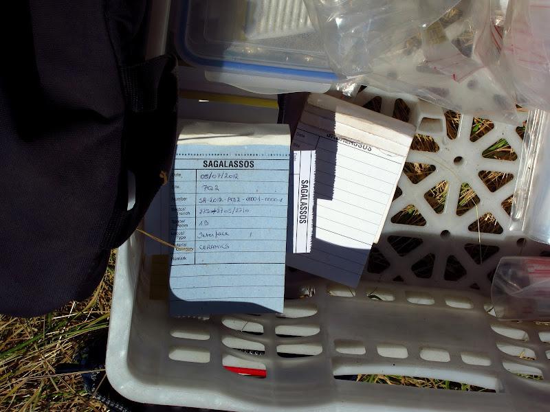 artifact log sheets