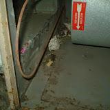 HVAC - P5130119.JPG