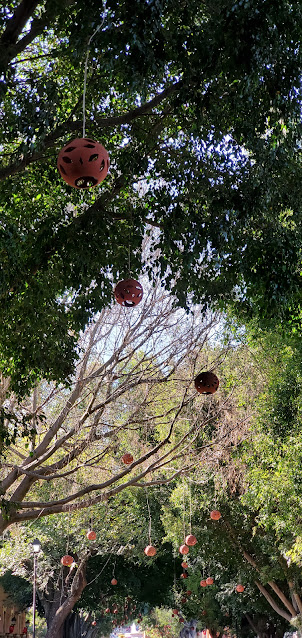 red, round clay lanterns hanging from trees with green leaves. One tree is without leaves.