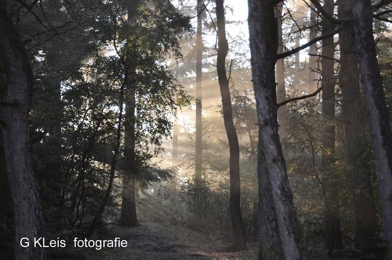 Herfst 2013 - Herfst_2013_012.jpg