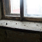 Уборка Рамонского дворцового комплекса 008.jpg